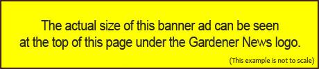 650 x 100 banner
